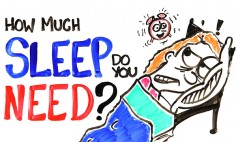 Do You Know How Much Sleep Do You Actually Need? See This…