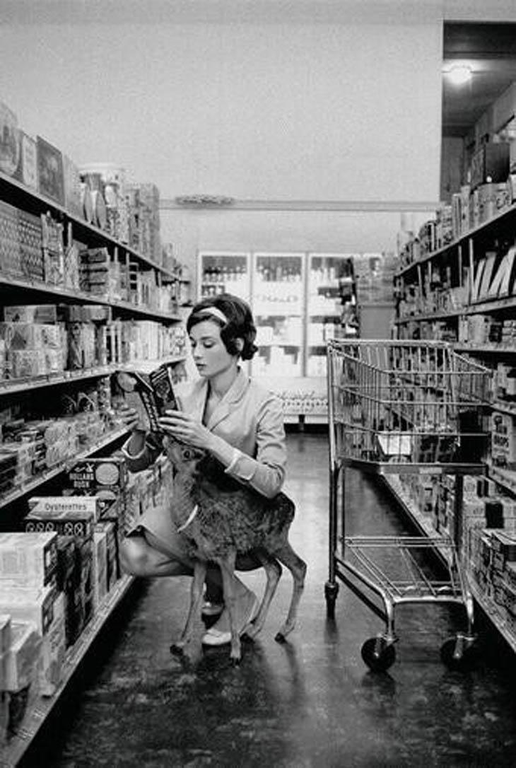 Audrey Hepburn shopping with her pet deer, Ip, in Beverly Hills, CA -1958.