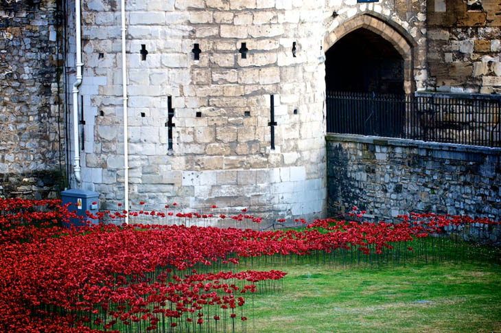 Blood Swept Lands and Seas of Red at The Tower of London, UK.