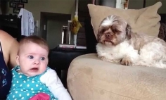 This Could Be The Cutest Baby Argument You've Ever Seen. It's Cuteness Overload!