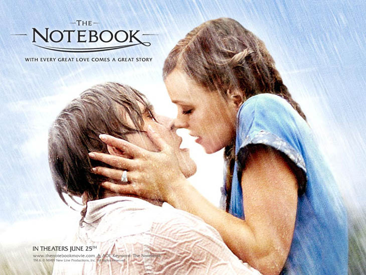 Best Movie Quotes - The Notebook (2004)
