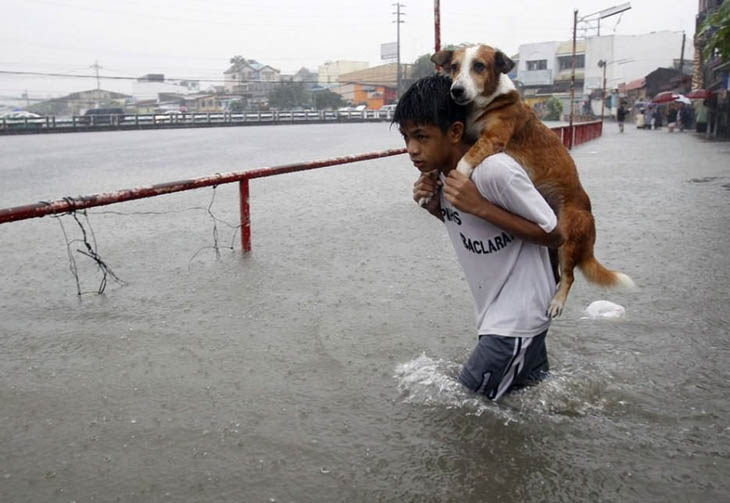 A Boy Carrying His Dog Through Filipino Flood Waters