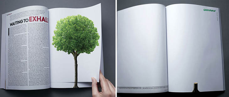 Deforestation Continues With The Turn Of A Page