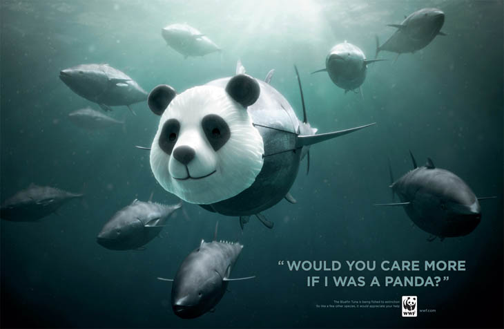 Social Issue Ads - Would You Care More If I was a Panda?