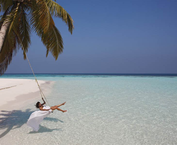 Awesome Lounging Places - Palm tree sea swing.