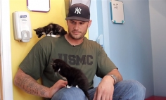 Watch These Big Men Meet Kittens For The First Time In Their Life, It's PurrFECT!