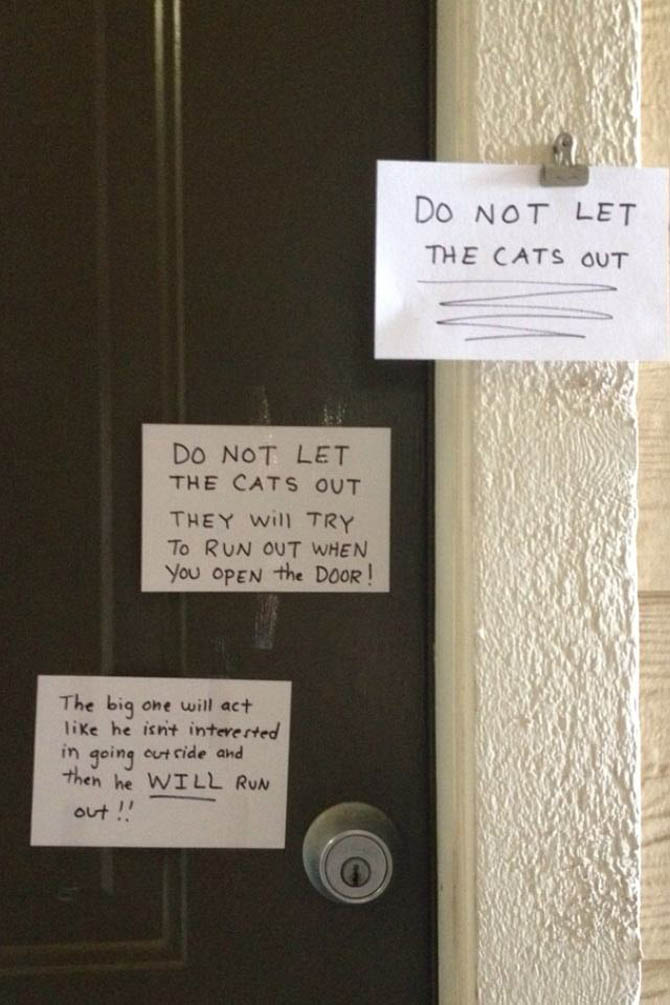 Funny But Important Notes From Total Strangers