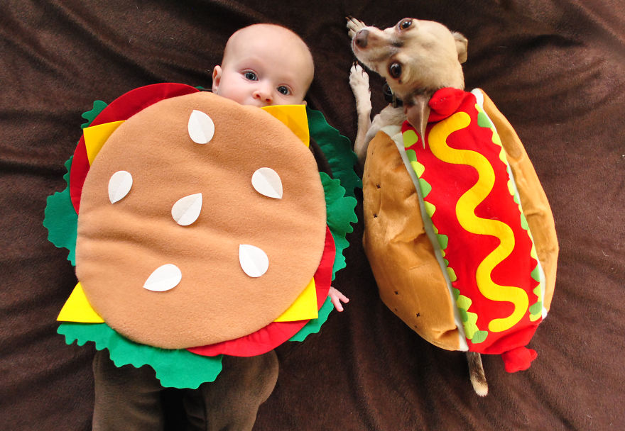 Horribly Cute Halloween Costumes for Pet & 60 Horribly Hilarious Halloween Costumes For Cute Pets.