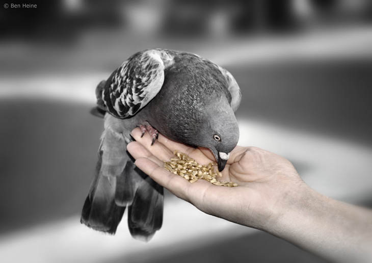 Do everything with a touch of kindness.