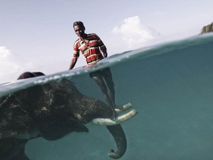 Mahout at Radha Nagar Beach in Havelock, Andaman Islands