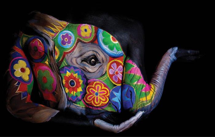 Body Painting Art - Colorful Elephant