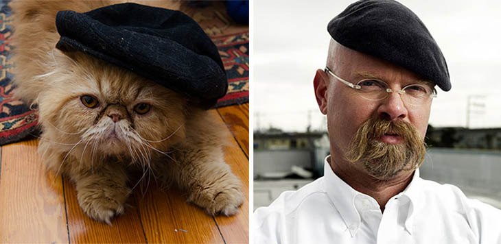 Jamie From Mythbusters Copycat Cat