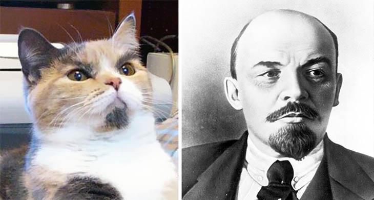 Lenin Copycat Cat