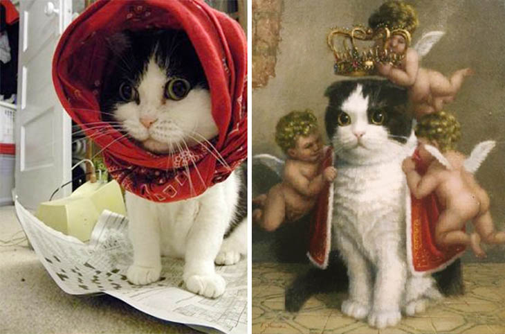 Cat From The Painting Copycat Cats