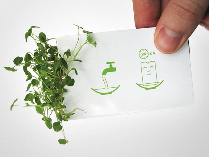 Smartest business cards - Designer's plant in your pocket card.