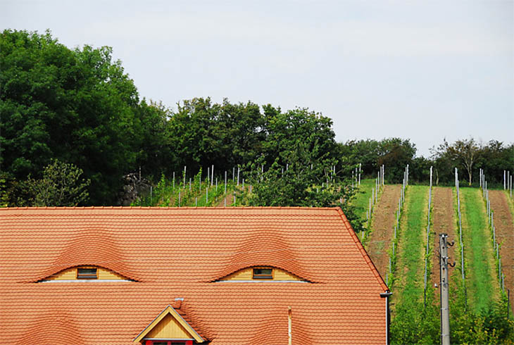 Houses with human faces - Blipfoto