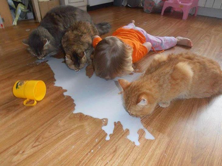 Cute Kids Act Like Animals- Cat Siblings Drinking Milk