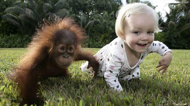 Cute Kids Act Like Animals- Baby Orangutan Rishi And Emily The Copycat