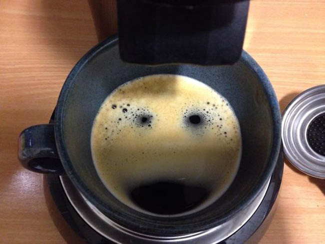 Everyday things with faces - pareidolia - A Polar Bear In My Coffee