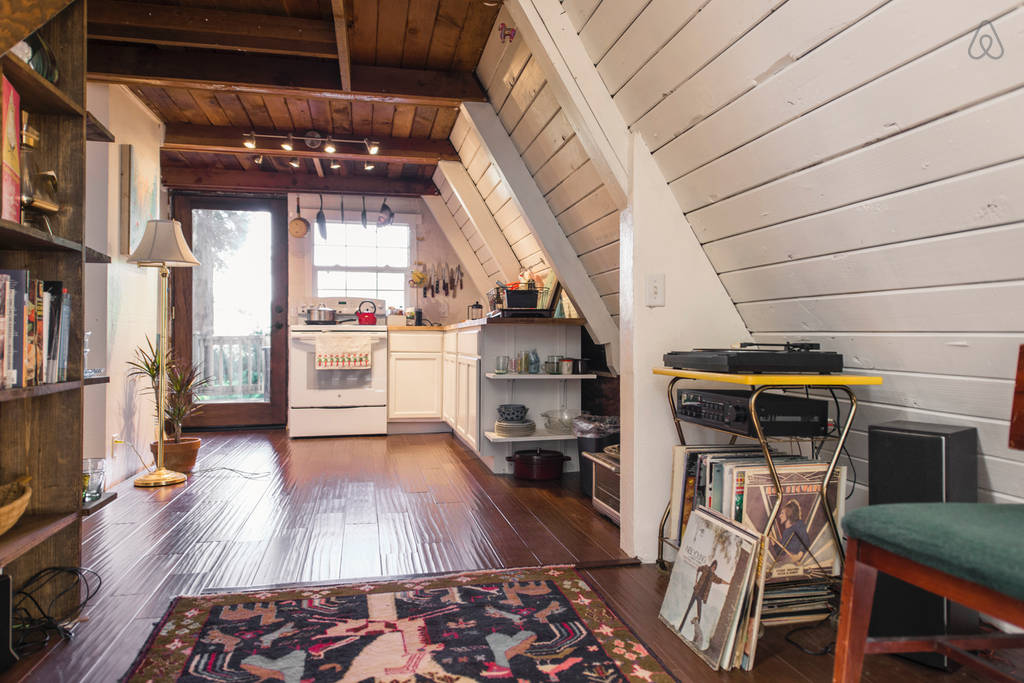 theres no tv but there is a record player and wood burning stove in - Tiny House Inside