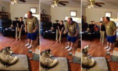 His Pet Stole His Potato Skin. The Ensuing Argument Is Just Hilarious!