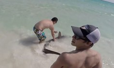 They Caught A Hammerhead Shark… And What They Did With It Is Just Amazing!