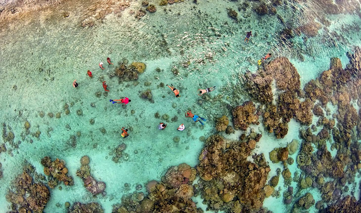 Snorkeling in the coral garden of Taha'a lagoon, French. Polynesia.