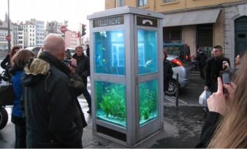 30 Creative Aquariums Ideas For Fish Lover. #14 Is Just Brilliant!