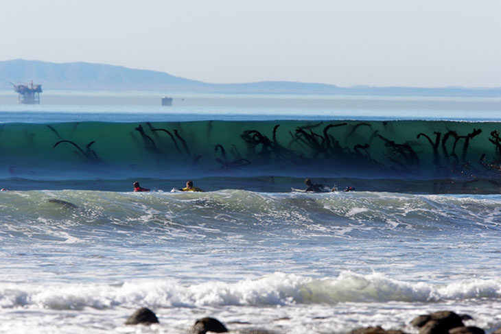 It's not a sea monster in waves.
