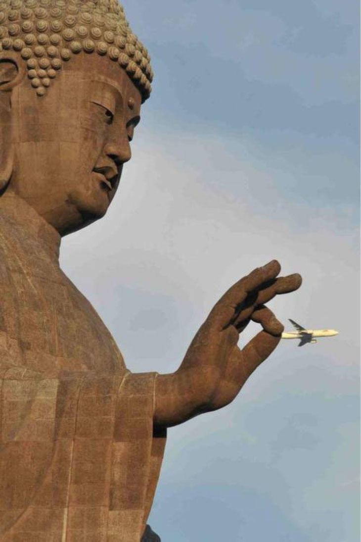 Most Unexpected Perfectly Timed Photos