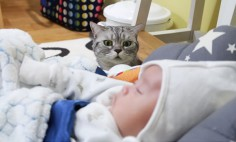 This Is Why You Should Get A Pet If You Have Children. It's A Cuteness Overload!