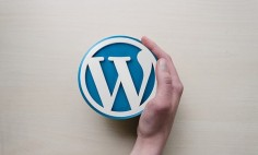 A Guide on Fixing the 500 Internal Server Error in WordPress?